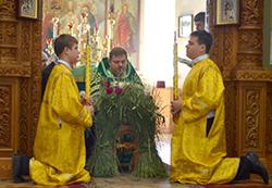 Праздник Святой Троицы в соборе Архистратига Божия Михаила
